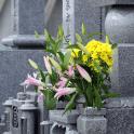 お墓について|佐藤石材店